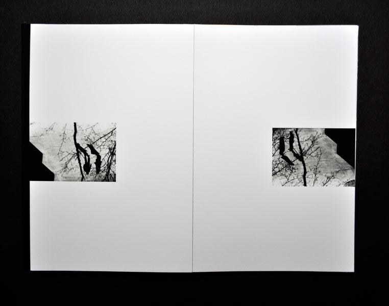 https://sarahhartwig.com/files/gimgs/th-47_47_silhouettessarahhartwig6-1.jpg