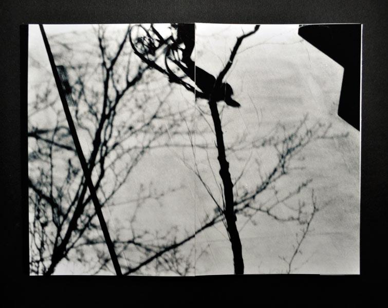 http://sarahhartwig.com/files/gimgs/47_silhouettessarahhartwig4-1.jpg