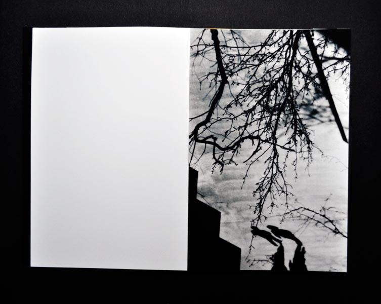 http://sarahhartwig.com/files/gimgs/47_silhouettessarahhartwig7-1.jpg