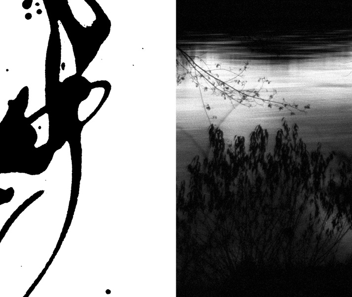 https://sarahhartwig.com/files/gimgs/th-53_53_calligraphysarah-hartwig-fliessen-bewegung-und-stille-kopie6_v3.jpg