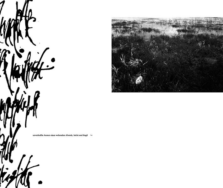 http://sarahhartwig.com/files/gimgs/53_calligraphysarah-hartwig-fliessen-bewegung-und-stille-kopie2.jpg
