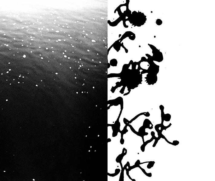 http://sarahhartwig.com/files/gimgs/53_calligraphysarah-hartwig-fliessen-bewegung-und-stille-kopie4.jpg